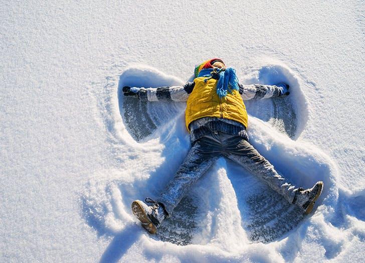 snow toys cat
