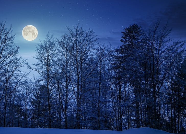 There's Going to Be a Full Wolf Moon Tonight—Here's What It Means (& How to See It)