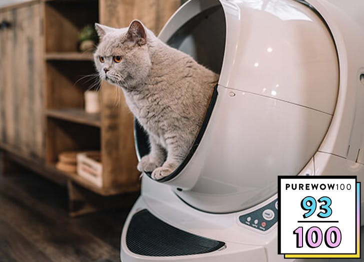 I Wont Say the Self-Cleaning Litter-Robot Changed My life, but—OK, It Changed My Life