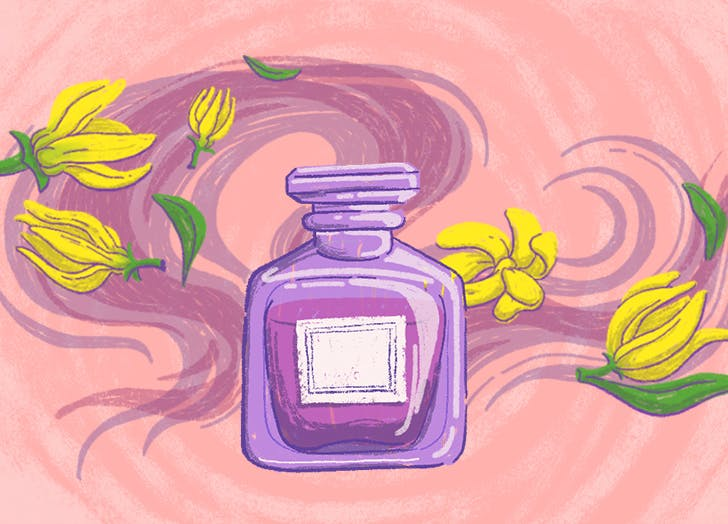 what does ylang ylang smell like cat