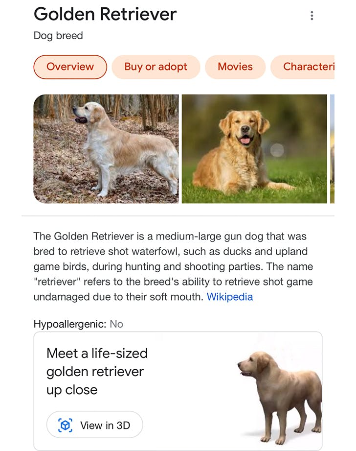 google ar animals how to