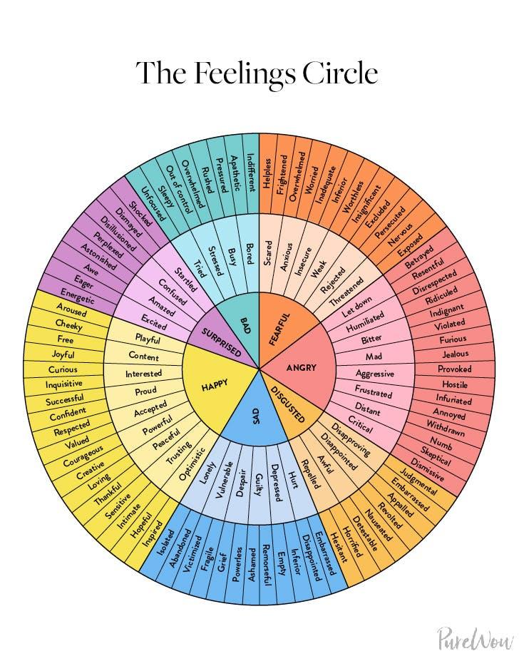 Feelings Chart Wheel