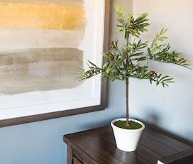 wayfair olive tree