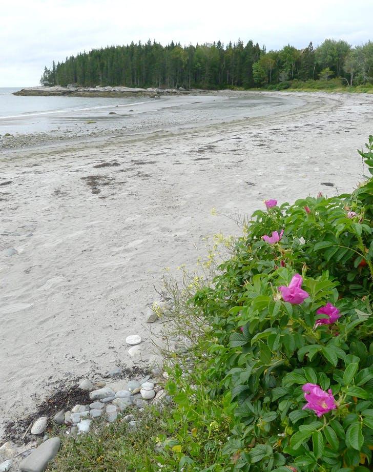 Best Beaches in Maine BIRCH POINT STATE PARK BEACH