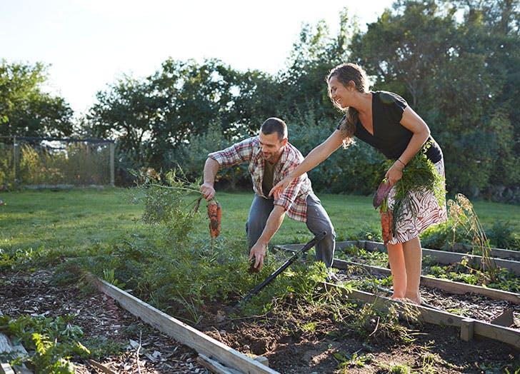outdoor date ideas garden together