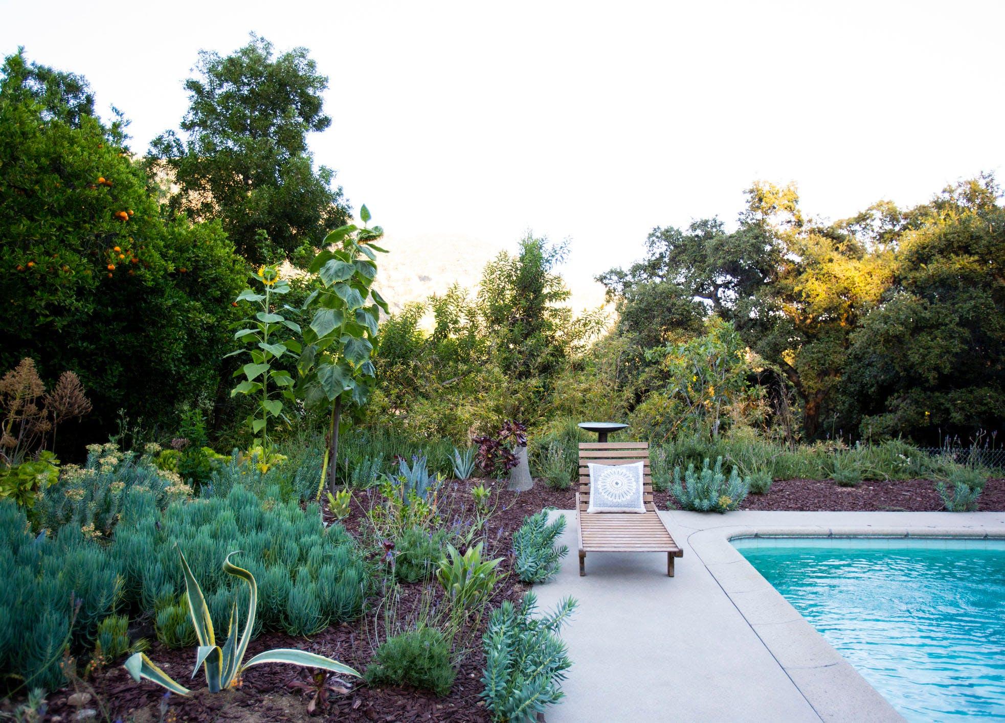 backyard upgrades pool garden
