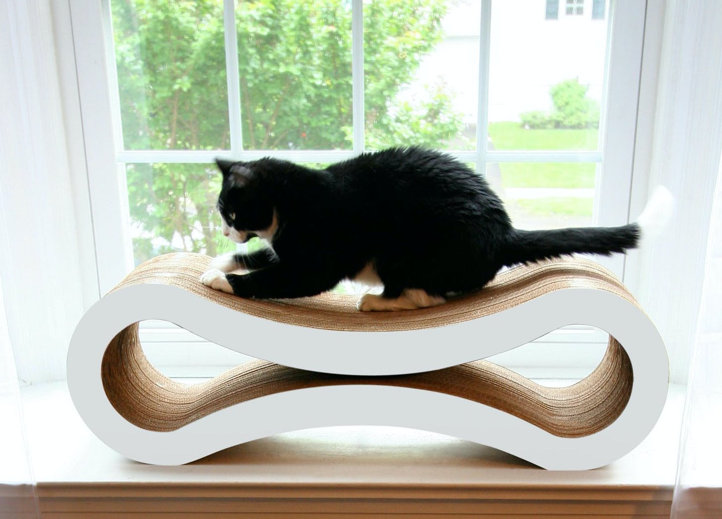 cat lady things scratching lounger