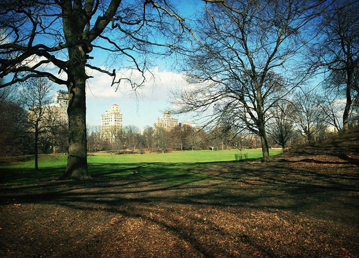 best picnic spots nyc prospect park