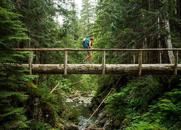 Best Camping in Washington OLYMPIC NATIONAL PARK