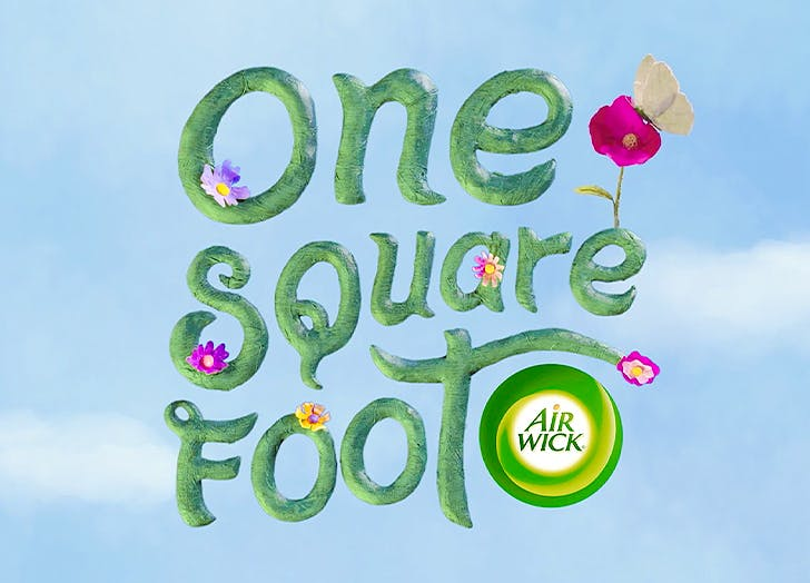 air wick one square foot CAT