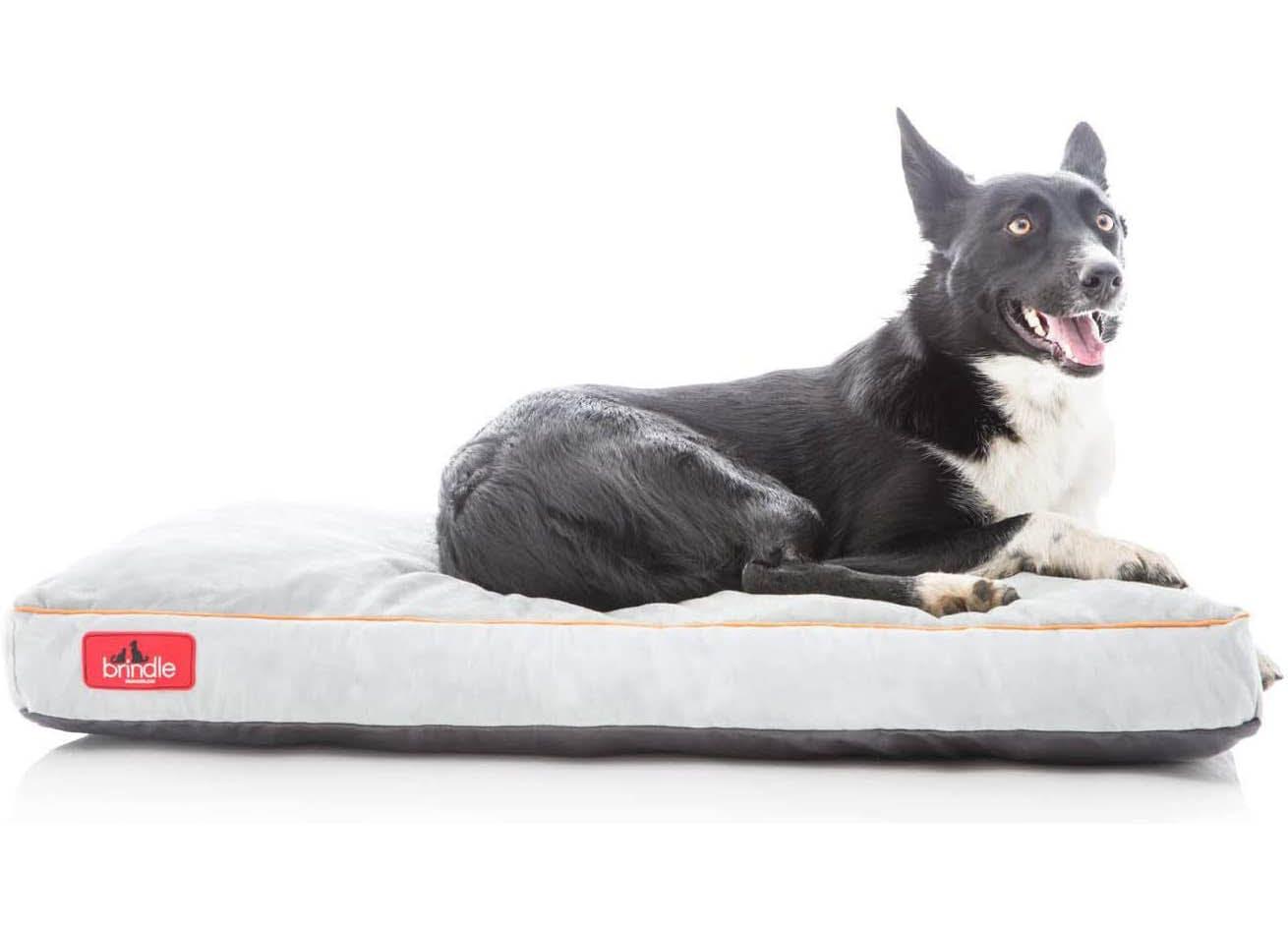 best dog bed brindle