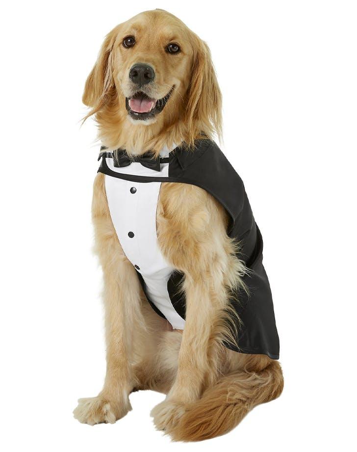 dog costumes formal tuxedo