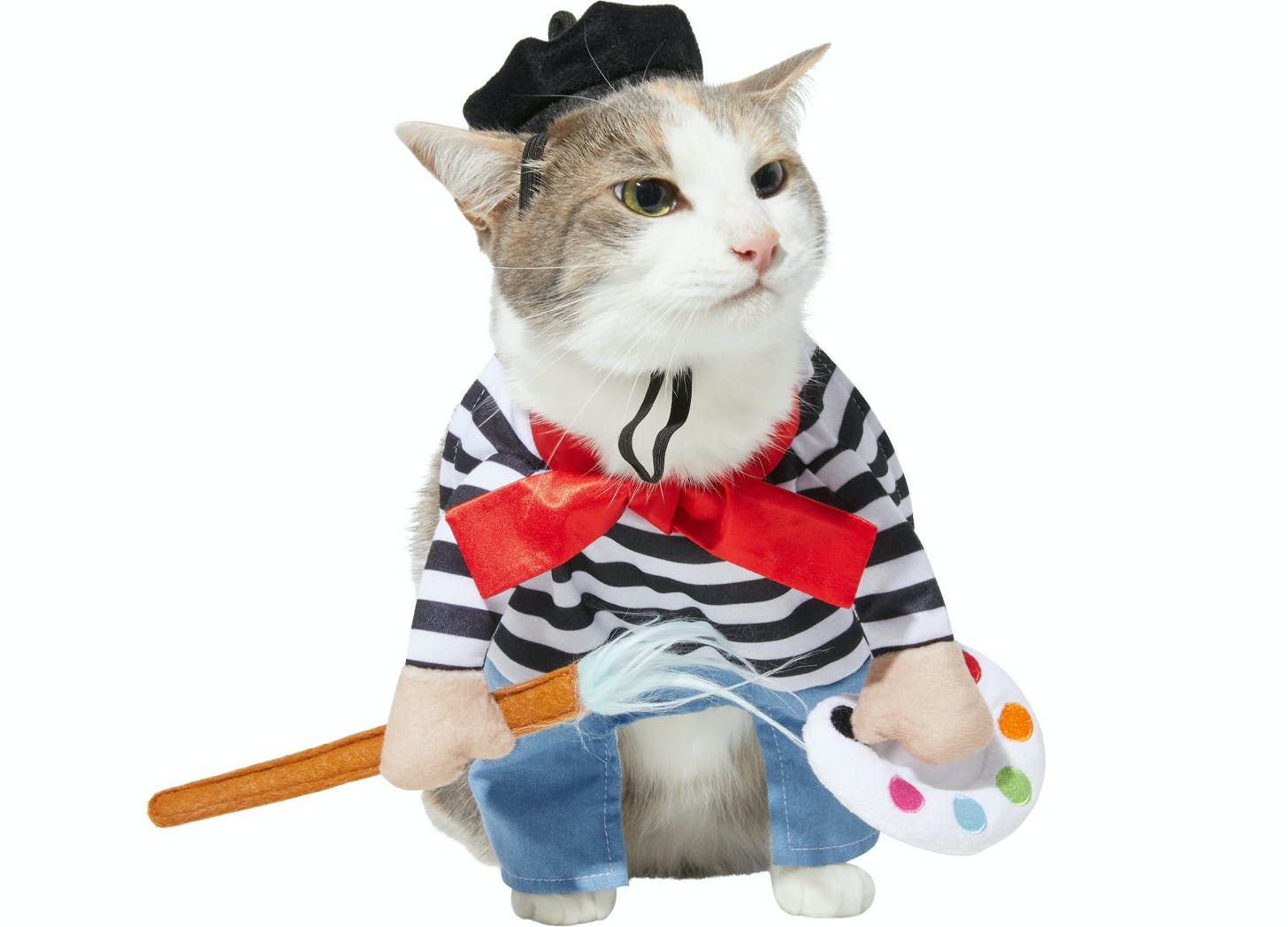 french artist cat halloween costumes