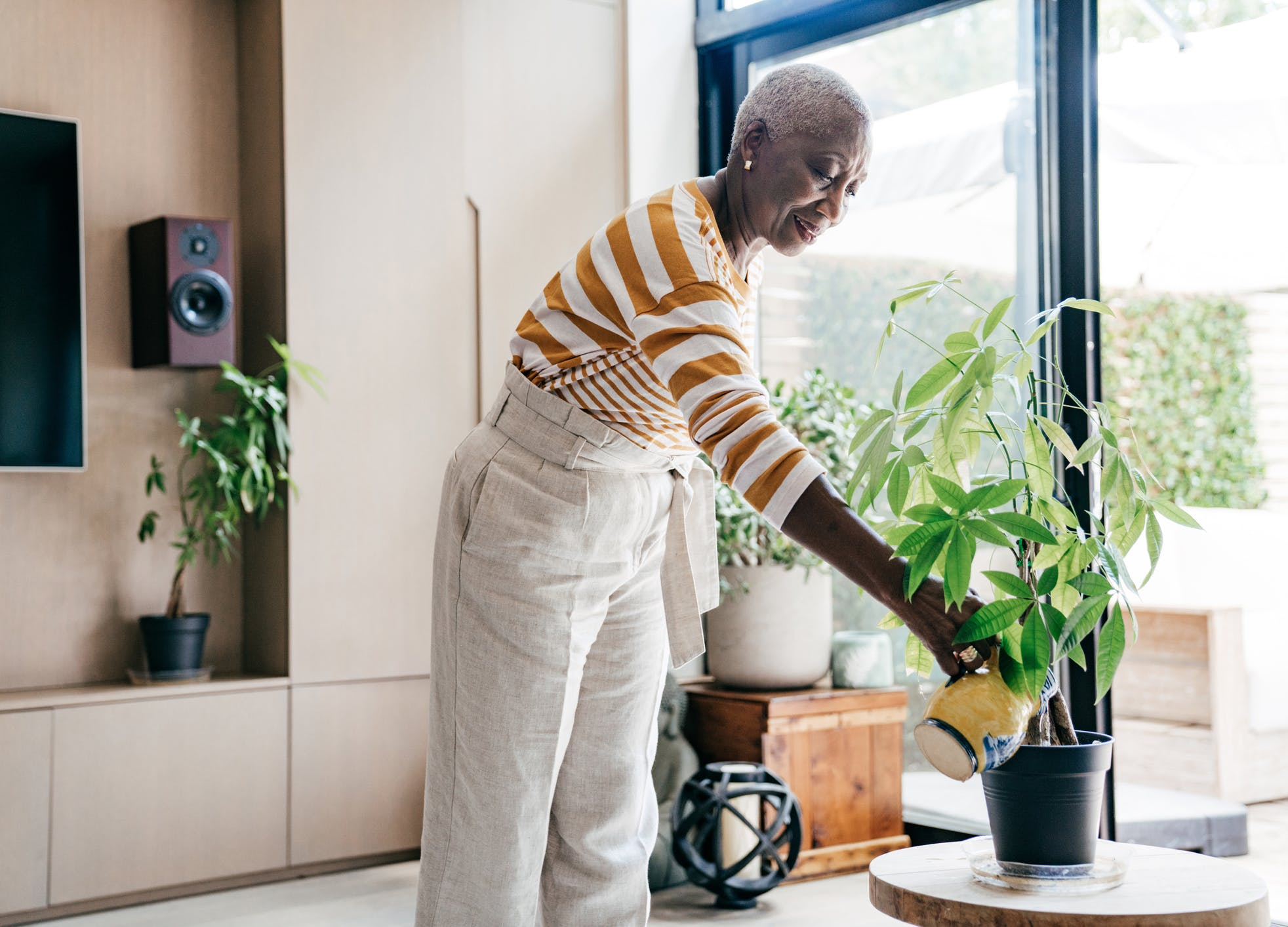 how to care for plants vacation watering rules