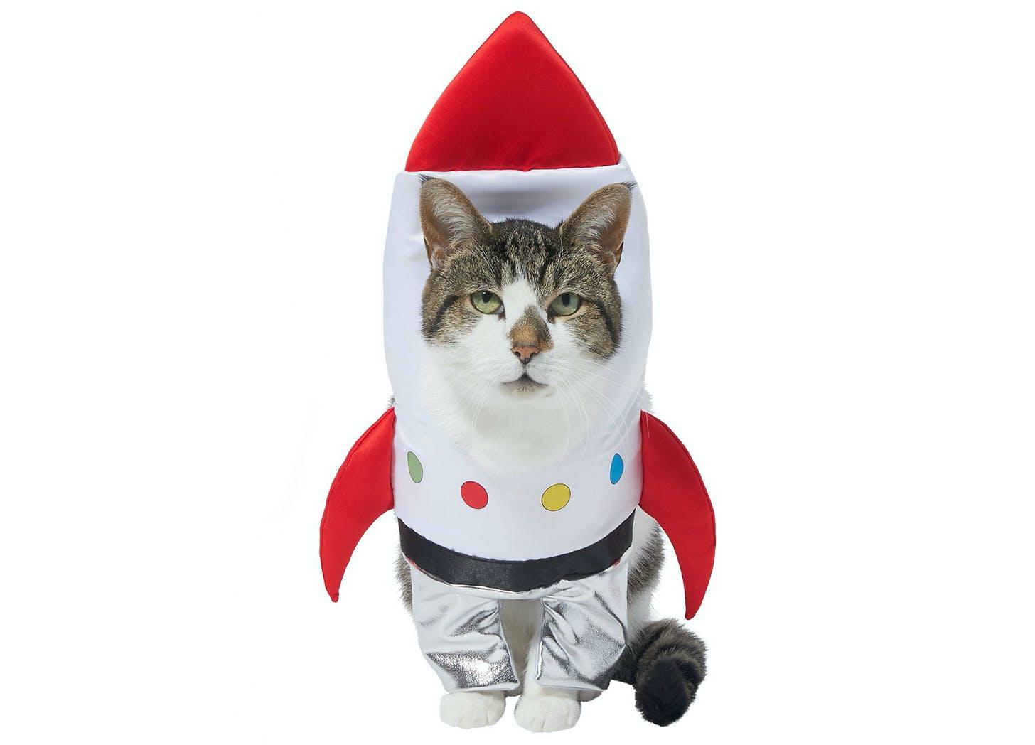spaceship cat halloween costumes